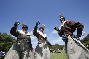 The Amelia Aviators